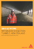 Waterview Connection Tunnels NZ Project Reference